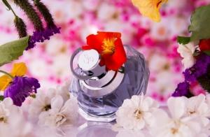 レールデュサボンのメンズ香水おすすめ5選!【上質な石鹸を感じさせるユニセックス香水】